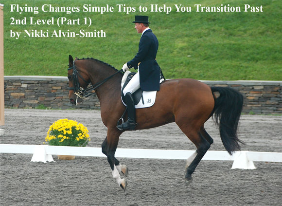 Flying Changes Simple Tips to Help You Transition Past 2nd Level (Part 1) by Nikki Alvin-Smith
