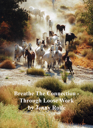 Breathe The Connection -  Through Loose Work by Jenny Rolfe