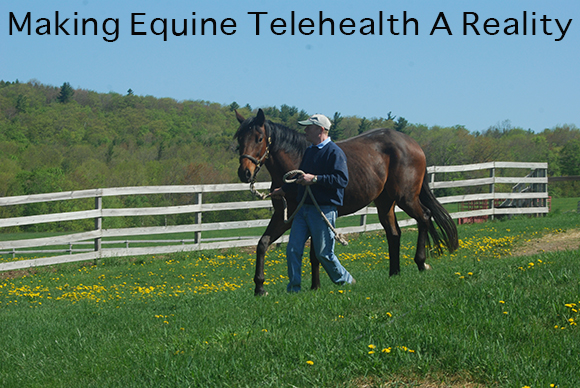 Making Equine Telehealth A Reality