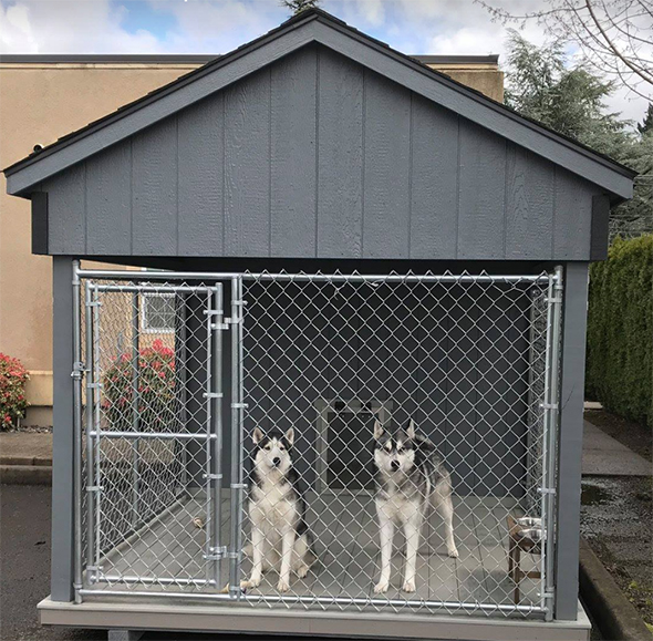 Canine Professionals Love Horizon Structures