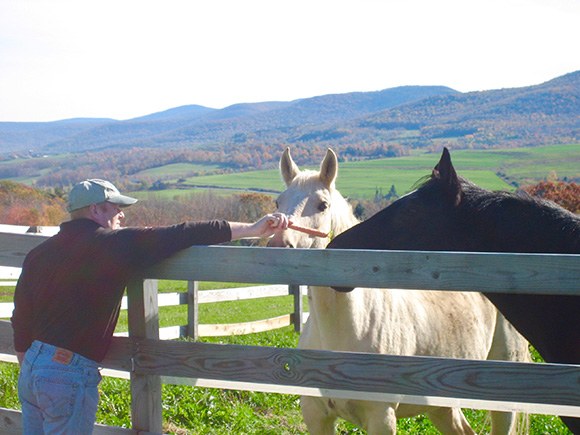 Tips For Horsekeeping On A Small Acreage