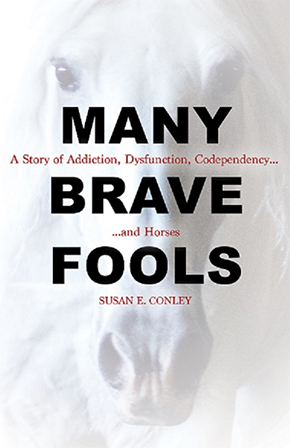 Book Review Many Brave Fools