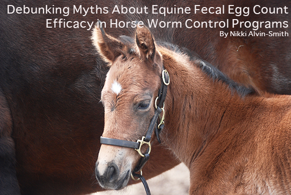 Debunking Myths About Equine Fecal Egg Count Efficacy in Horse Worm Control Programs By Nikki Alvin-Smith