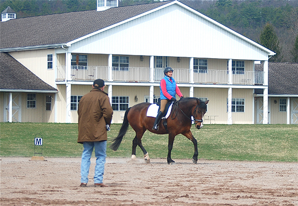 Riding Lessons From The Trainer's Perspective ~ What's Best? Group or One on One By Nikki Alvin-Smith