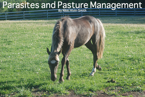 Parasites and Pasture Management