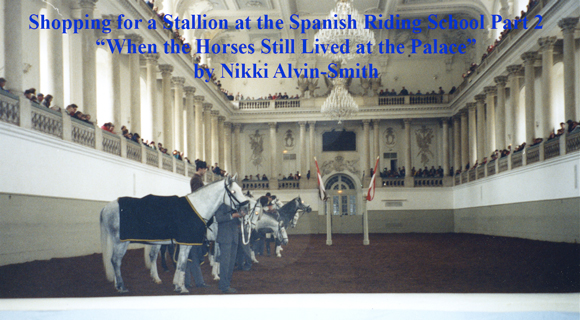 "Shopping for a Stallion at the Spanish Riding School Part 2 ""When the Horses Still Lived at the Palace"" by Nikki Alvin-Smith"