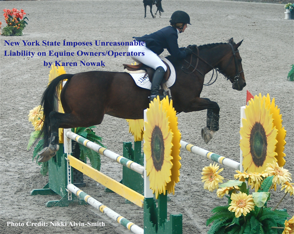 New York State Imposes Unreasonable Liability on Equine Owners/Operators by Karen Nowak