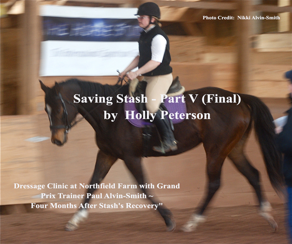 Saving Stash Part V Recovery & Update  by Holly Peterson
