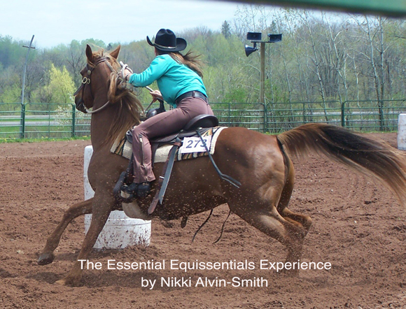 The Essential Equissentials Experience By Nikki Alvin-Smith
