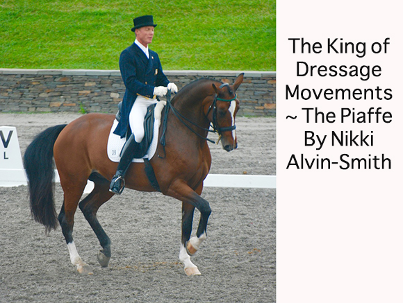 The King of Dressage Movements ~ The Piaffe by Nikki Alvin-Smith