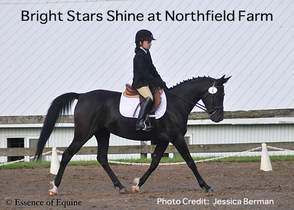 Bright Stars Shine at Northfield Farm