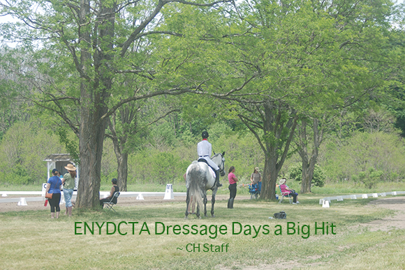 ENYDCTA Dressage Days a Big Hit