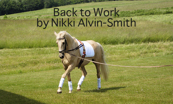 Back to Work by Nikki Alvin-Smith
