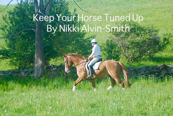 Keep Your Horse Tuned Up By Nikki Alvin-Smith