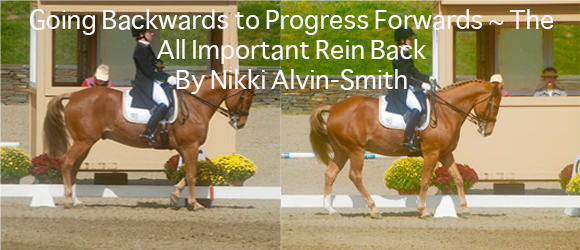 Going Backwards to Progress Forwards ~ The All Important Rein Back  By Nikki Alvin-Smith