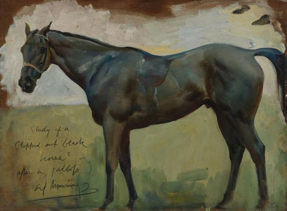ALFRED MUNNINGS By Amy McLaughlin