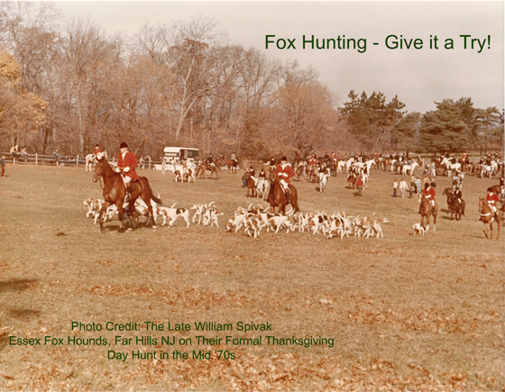 Fox Hunting - Give it a Try!
