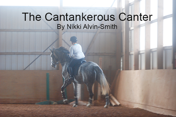 The Cantankerous Canter By Nikki Alvin-Smith