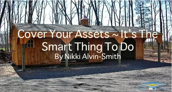 Cover Your Assets ~ It's The Smart Thing To Do By Nikki Alvin-Smith