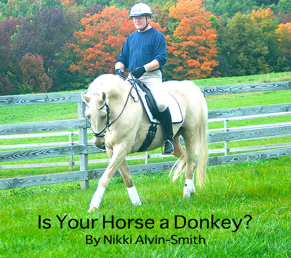 Is Your Horse a Donkey? By Nikki Alvin-Smith