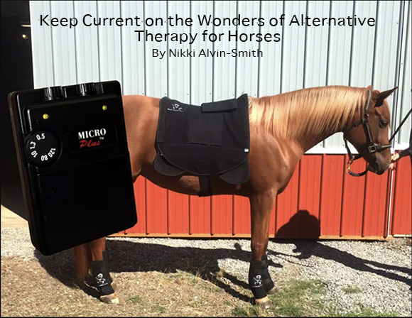 Keep Current on the Wonders of Alternative Therapy for Horses By Nikki Alvin-Smith