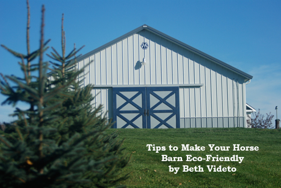 Tips to Make Your Horse Barn Eco-Friendly by Beth Videto