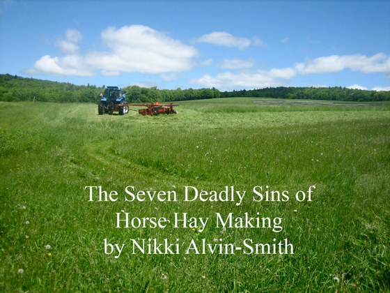 The Seven Deadly Sins of Horse Hay Making by Nikki Alvin-Smith