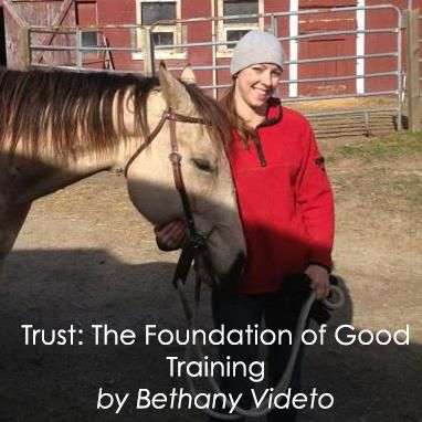 Trust: The Foundation of Good Training